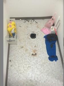 トイレの便器を外した所