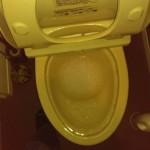 トイレが詰まっている所
