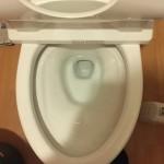 トイレ詰まりが直った所