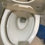 トイレのつまりが直ったところ