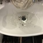 洗面所が詰まっているところ