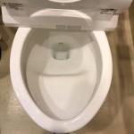 IMG_363トイレのつまりが直ったところ0